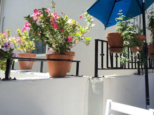Jeannine's patio Montecito